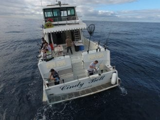 Cindy Cindy Bett - Deep Sea Fishing Charter SydneyBett - Deep Sea Fishing Charter Sydney