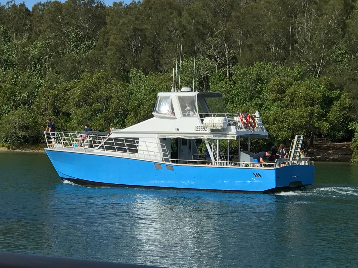Whale Watcher Cronulla