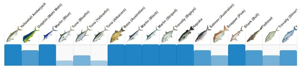 Summer fishing charter Sydney