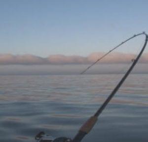 Setting the hook fishing