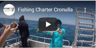 Fishing charter Cronulla sydney video