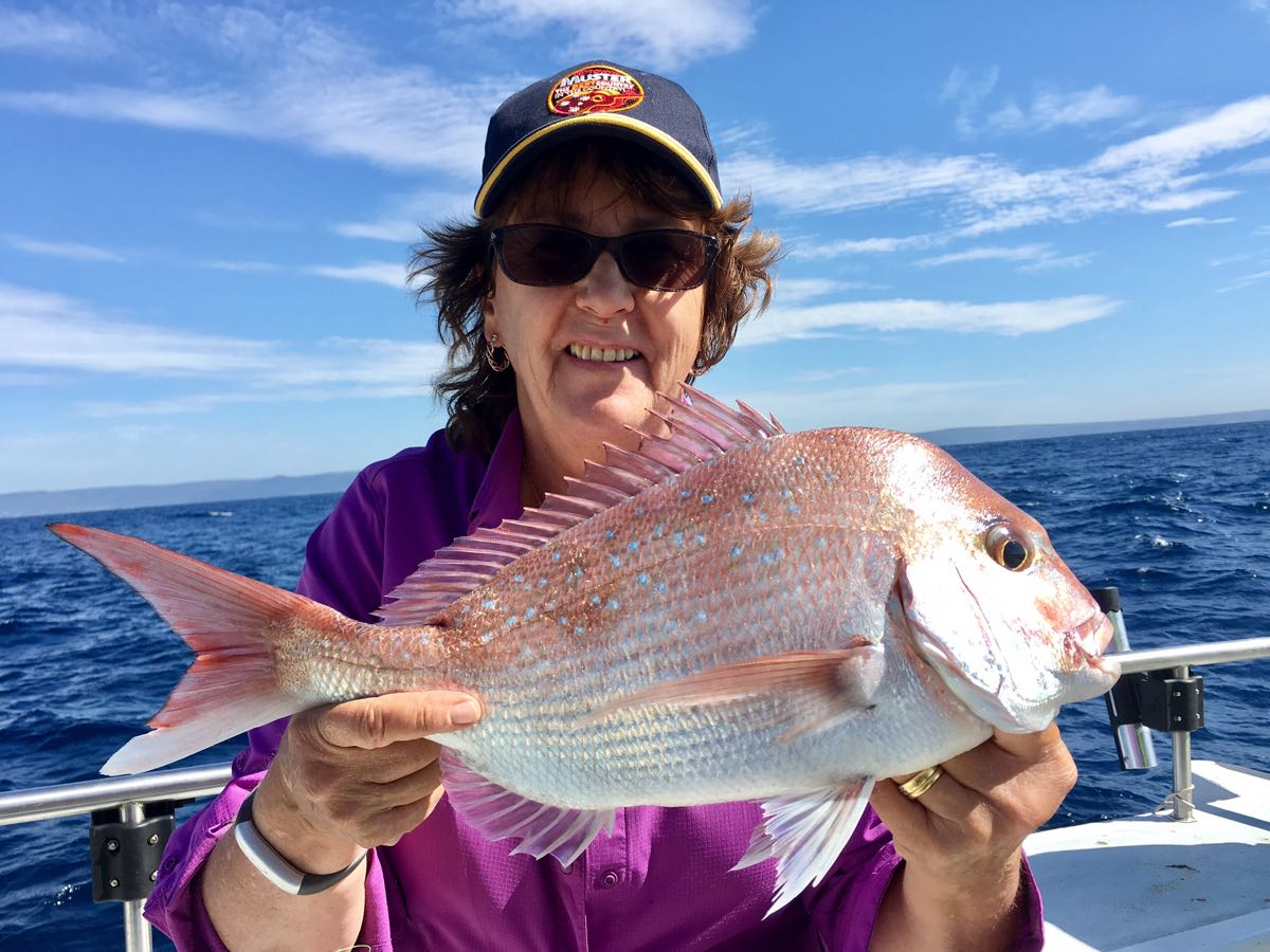 Snapper fishing charters Sydney