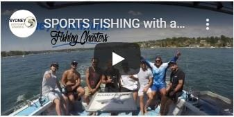 Sports fishing charter Cronulla Sydney