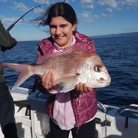 Snapper fishing October Sydney